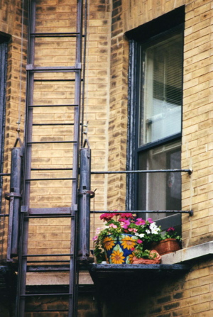 chi-garden-fire-escape.jpg