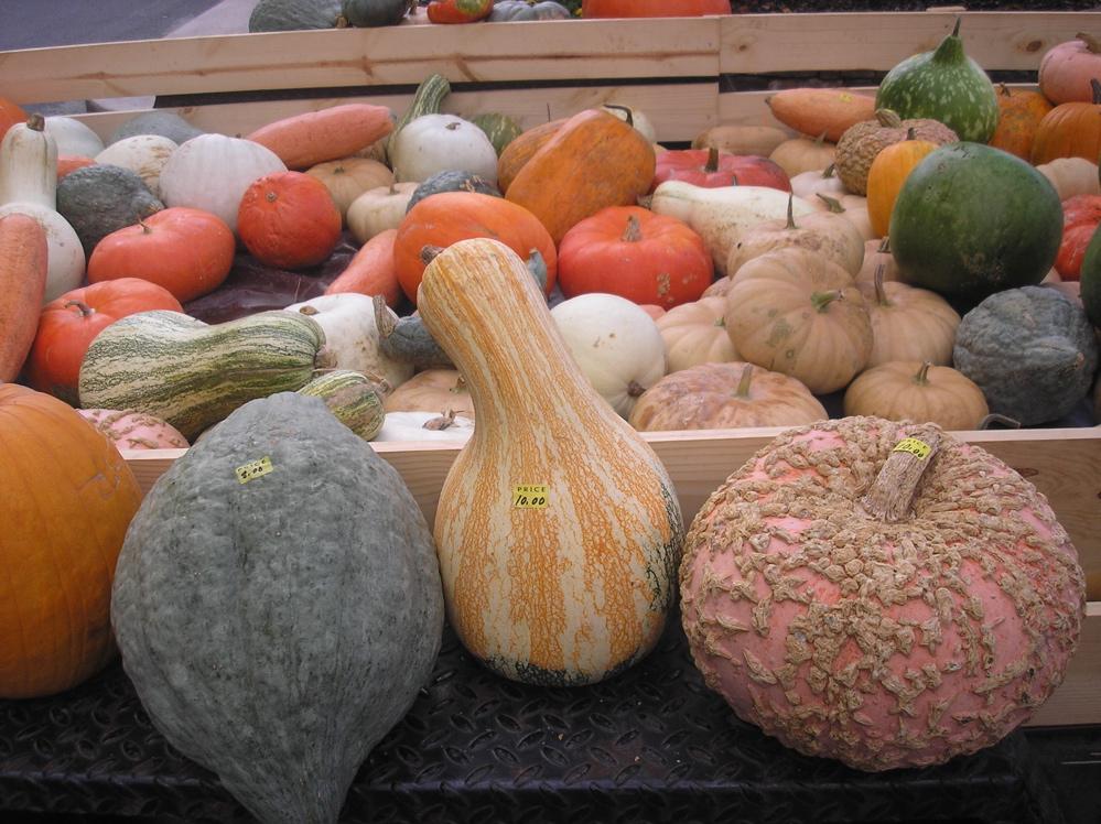 fayetteville-farmers-market.JPG