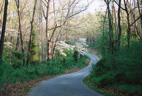 april-2007-driveway.jpg