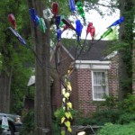 Colorful Bottle Tree, Jackson, Mississippi