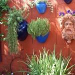 Terra Cotta GardenWeb Wall